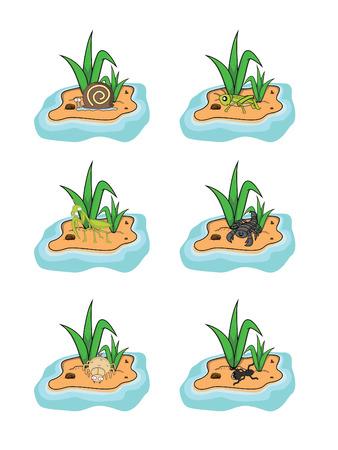grass land: