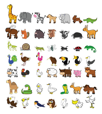 funny animal: big set funny animal