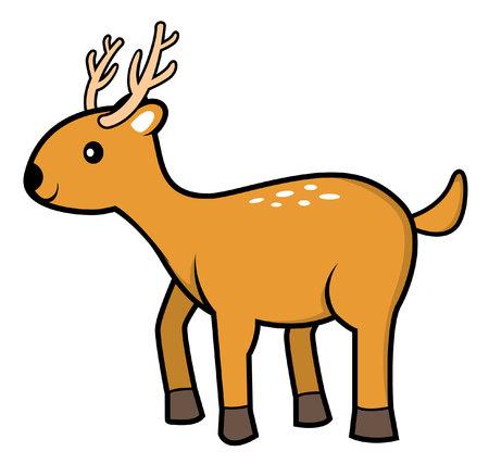 standing on one leg: deer