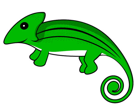 chameleon: chameleon