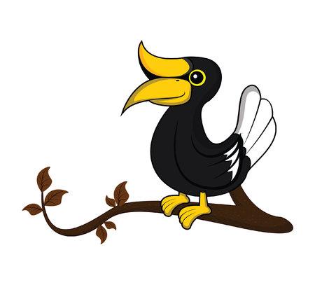 hornbill: hornbill tree