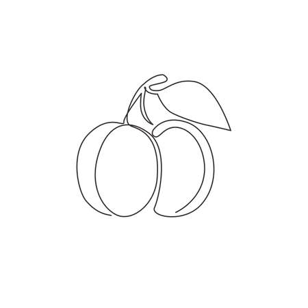 Single continuous line drawing of whole healthy organic apricot   identity. Fresh fruitage concept for fruit garden icon. Modern one line draw graphic design vector illustration
