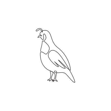 One single line drawing of adorable California valley quail for poultry identity. Dust bath bird mascot concept for national zoo icon. Modern continuous line draw design vector illustration