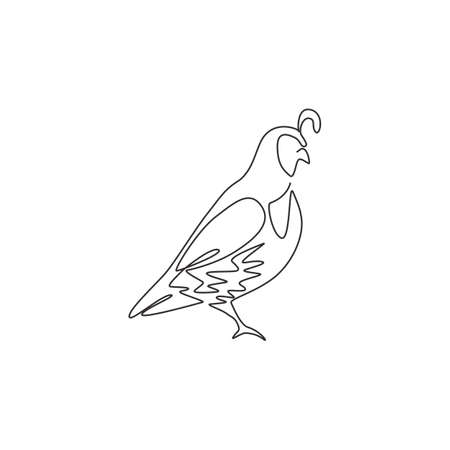 One continuous line drawing of cute California quail for farm  identity. Highly sociable bird mascot concept for national park icon. Modern single line draw design graphic vector illustration