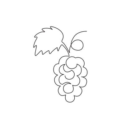 One continuous line drawing healthy organic grapes for vineyard identity. Fresh tropical fruitage concept for fruit orchard garden icon. Modern single line draw design vector graphic illustration