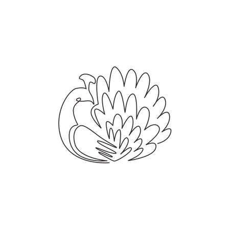 Single continuous line drawing of pretty peacock for company  identity. Large beauty bird mascot concept for pet lover club icon. Modern one line draw graphic design vector illustration 矢量图像