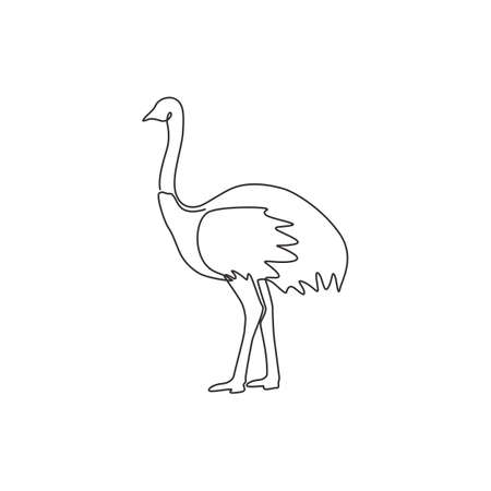 Single continuous line drawing of large ostrich for  identity. Long necked bird mascot concept for national zoo icon. Modern one line draw graphic design vector illustration 矢量图像