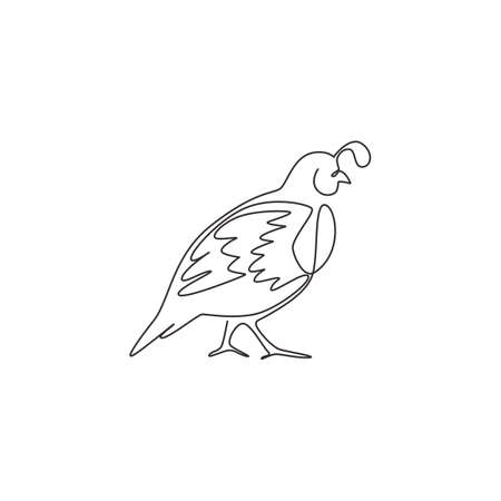 One single line drawing of funny valley quail for  identity. California quail bird mascot concept for national conservation park icon. Modern continuous line draw design vector illustration
