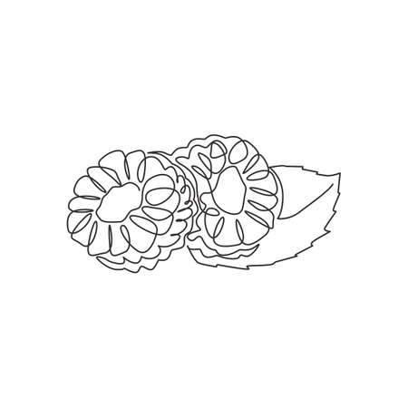 One single line drawing of half sliced healthy organic raspberry for orchard logo identity. Fresh berries fruitage concept for fruit garden icon. Modern continuous line draw design vector illustration