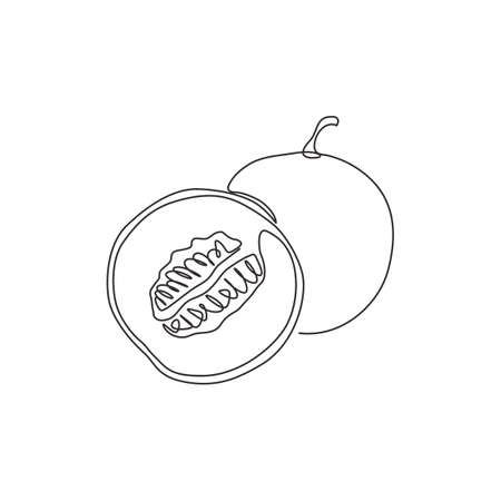 One continuous line drawing of whole and half sliced healthy organic melon for orchard logo identity. Fresh fruitage concept for fruit garden icon. Modern single line draw design vector illustration Stock Illustratie