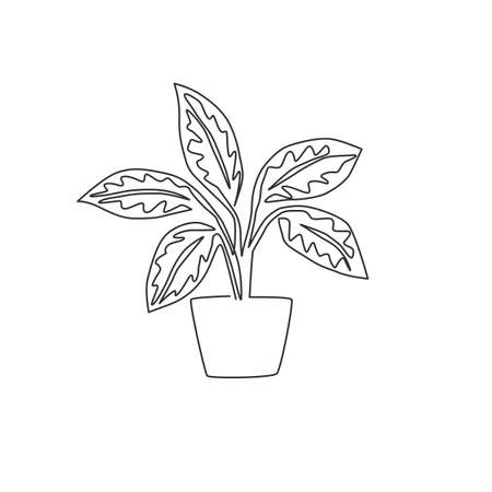One single line drawing cute potted tropical leaf aglaonema plant. Printable decorative houseplant concept for home wall decor ornament. Modern continuous line draw design vector graphic illustration
