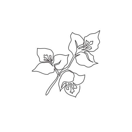 One single line drawing of beauty fresh bougainville for wall home decor poster. Printable decorative flower concept for greeting card ornament. Modern continuous line draw design vector illustration Vector Illustration