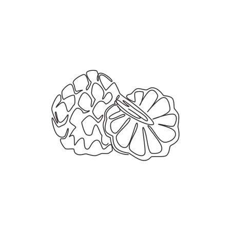 One continuous line drawing of whole and half sliced healthy organic fruit sugar for orchard logo identity. Fresh fruitage concept for garden icon. Modern single line draw design vector illustration