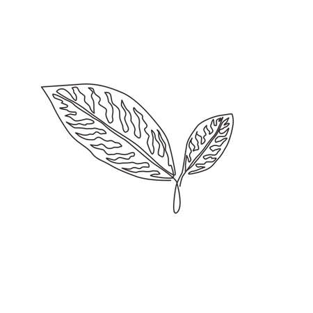 One continuous line drawing of cute tropical leaves aglaonema plant. Printable decorative houseplant concept for home wall decor ornament. Modern single line draw design graphic vector illustration