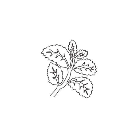 One continuous line drawing of healthy organic mint leaves for farm logo identity. Fresh mentha plant concept for plantation icon. Modern single line draw design vector graphic illustration