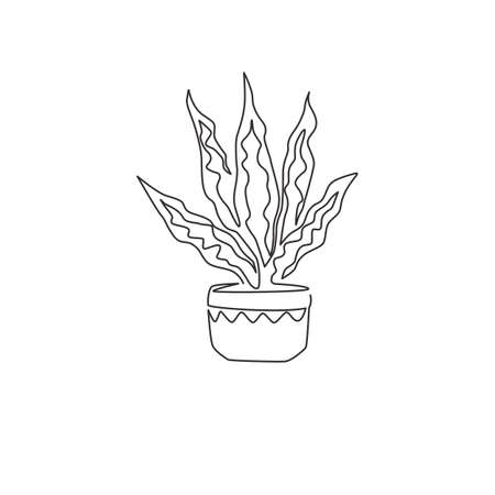 One continuous line drawing of potted snake plant for home decor logo identity. Fresh evergreen perennial plant concept for plant icon. Modern single graphic line draw design vector illustration Ilustrace