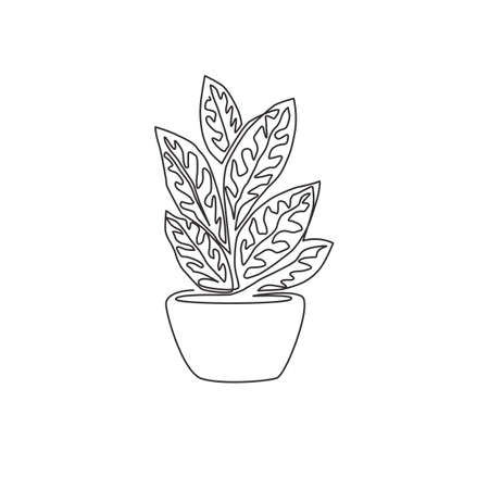 One single line drawing of cute potted tropical aglaonema plant. Printable decorative houseplant concept for home wall decor ornament. Modern continuous line graphic draw design vector illustration