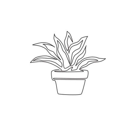 One single line drawing of potted snake plant for home decor logo identity. Fresh evergreen perennial plant concept for  plant icon. Modern continuous line draw design vector graphic illustration