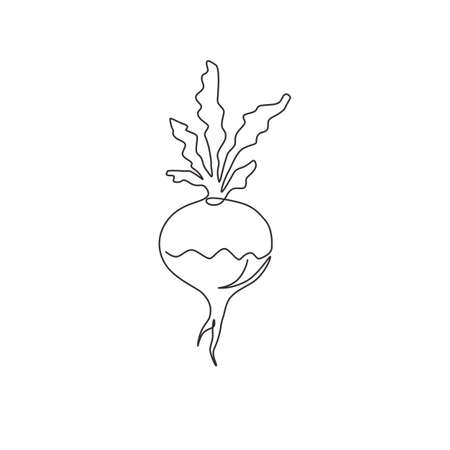 One continuous line drawing of whole healthy organic white turnip for farm logo identity. Fresh plant concept for root vegetable icon. Modern single line draw design graphic vector illustration