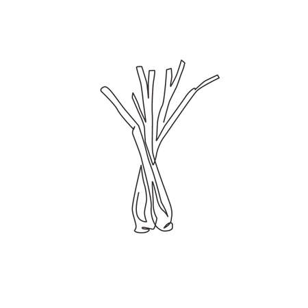 Single continuous line drawing of whole healthy organic lemongrass for farm logo identity. Fresh cymbopogon concept for grass vegetable icon. Modern one line draw design vector graphic illustration