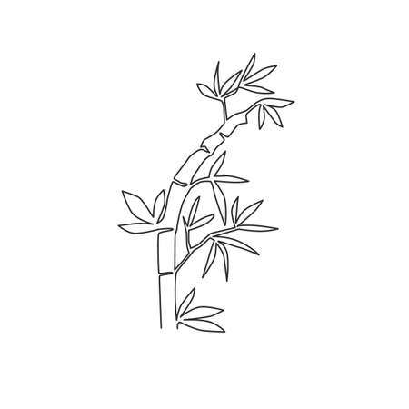 One single line drawing of bamboo trees for plantation logo identity. Fresh evergreen perennial flowering plant concept for plant icon. Modern continuous line draw design vector graphic illustration Ilustrace