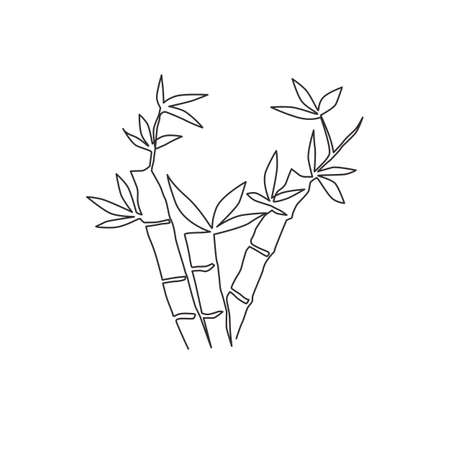 One continuous line drawing of bamboo trees for plantation logo identity. Fresh evergreen perennial flowering plant concept for plant icon. Modern single line draw design graphic vector illustration Ilustrace