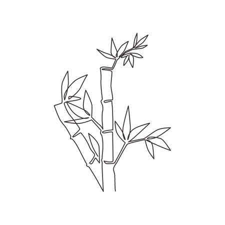 Single continuous line drawing of bamboo trees for plantation logo identity. Fresh evergreen perennial flowering plant concept for plant icon. Modern one line draw graphic design vector illustration
