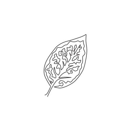 One continuous line drawing cute tropical leaf aglaonema plant. Printable decorative exotic houseplant concept for home wall decor ornament. Modern single line draw graphic design vector illustration