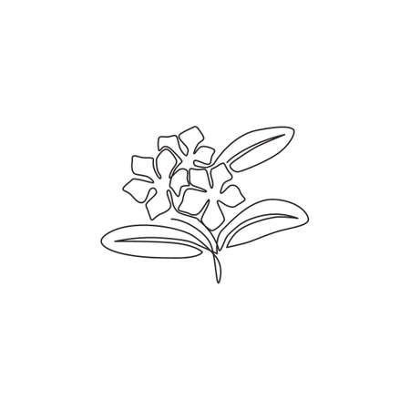 Single continuous line drawing of beauty fresh vinca for home wall art decor poster. Printable decorative periwinkle flower for greeting card ornament. Modern one line draw design vector illustration