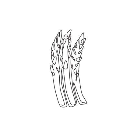 Single continuous line drawing of whole healthy organic asparagus for plantation logo identity. Fresh perennial flowering plant concept for veggie icon. Modern one line draw design vector illustration Ilustrace