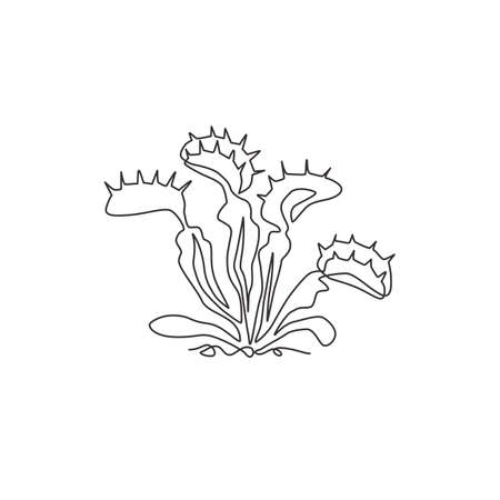 Single one line drawing scary fresh venus flytrap for garden logo. Decorative of dionaea muscipula concept for home art wall decor poster print. Modern continuous line draw design vector illustration 矢量图像