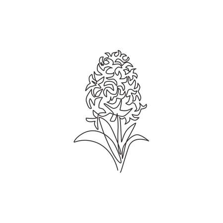 One single line drawing of beauty fresh hyacinthus for garden logo. Printable decorative hyacinth flower for home decor wall art poster print. Modern continuous line draw design vector illustration