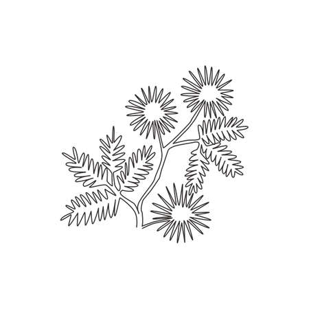 Single continuous line drawing of beauty fresh mimosa pudica for home decor wall art poster print. Decorative touch-me-not flower for invitation card. Modern one line draw design vector illustration