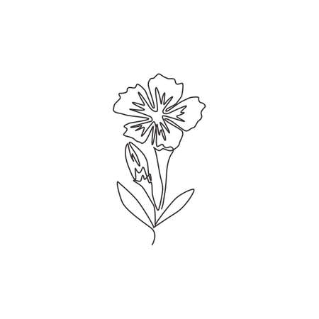 Single continuous line drawing of beauty fresh dianthus for home art wall decor poster print. Printable decorative sweet william flower concept for . Trendy one line draw design vector illustration Ilustrace