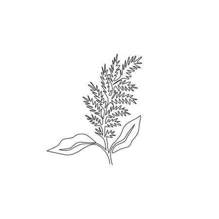 One continuous line drawing of beauty fresh amaranthus for home wall decor ar poster print. Decorative amaranth flower concept for wedding invitation card. Single line draw design vector illustration Ilustracja