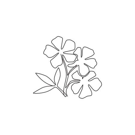 One continuous line drawing beauty fresh catharanthus for home wall decor art poster print Decorative periwinkle flower concept for wedding invitation card. Single line draw design vector illustration