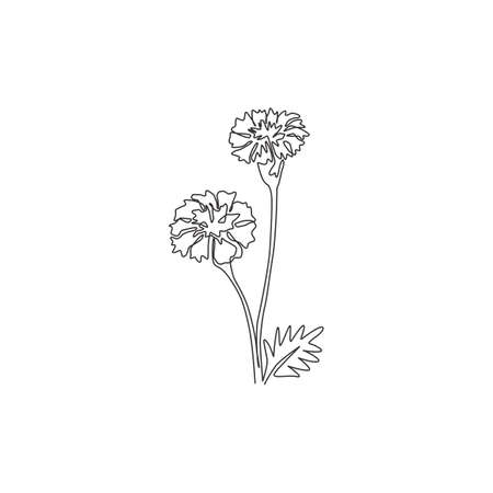Single continuous line drawing of beauty fresh tagetes erecta for home decor wall art poster print. Decorative marigold flower for floral card frame. Modern one line draw design vector illustration 向量圖像