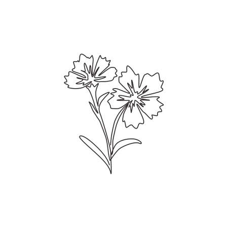 Single one line drawing of beauty fresh dianthus for home wall decor art poster print. Decorative carnation flower concept for green park icon. Modern continuous line draw design vector illustration Ilustrace