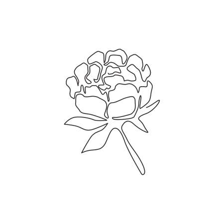 One continuous line drawing of beauty fresh perennial plant wall decor home art poster print. Printable decorative peony flower for green park icon. Modern single line draw design vector illustration Ilustrace