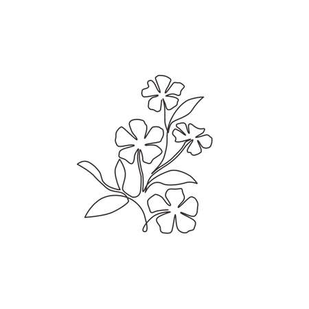 Single one line drawing of beauty fresh catharanthus for garden logo. Decorative periwinkle flower concept for home wall decor art poster print. Modern continuous line draw design vector illustration