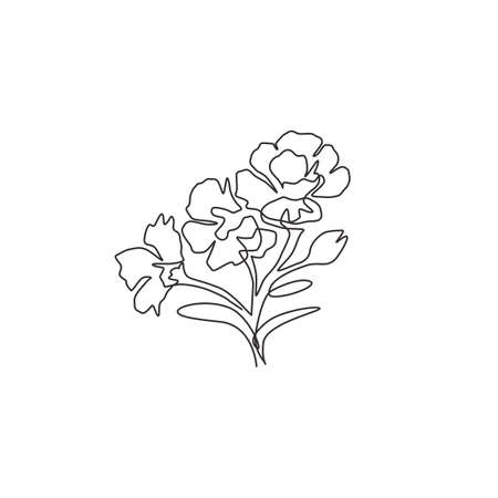 One continuous line drawing beauty fresh dianthus for home wall art decor poster print. Decorative sweet william flower concept for invitation card. Modern single line draw design vector illustration Ilustrace