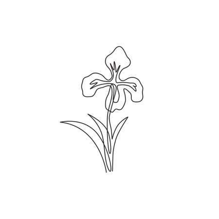 One single line drawing of beauty fresh perennial plants for garden logo. Printable decorative iris flower concept for home decor wall art poster print. Continuous line draw design vector illustration