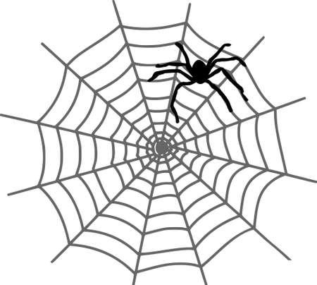 SPIDER WEB Nature Silhouette Vector