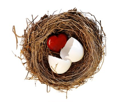 red heart hatching from white egg in nest photo