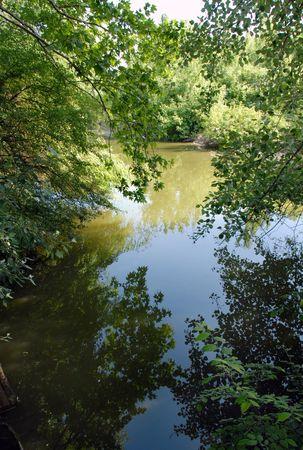 scenic river landscape in tree branch green frame Stock Photo - 5035056