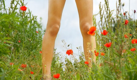 standing girl legs over green summer meadow with blooming red poppies photo