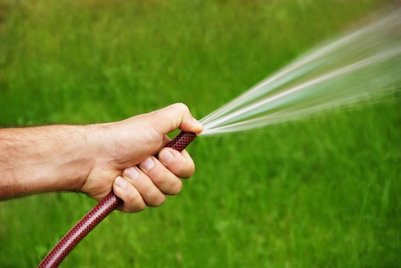 water hose: male hand with a hose watering grass