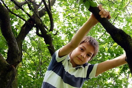 caucasian cute boy portrait on tree outdoor photo