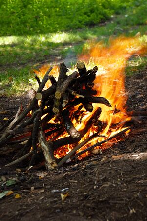 Scenic burning woods in yellow fire outdoor photo
