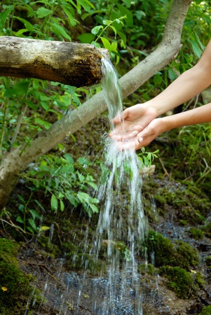 washing hands by spring water under wooden gutter over green natural background Stock Photo - 10501623